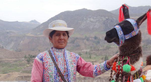 Puno – Cañón del Colca – Arequipa (Full day) / Servicio privado