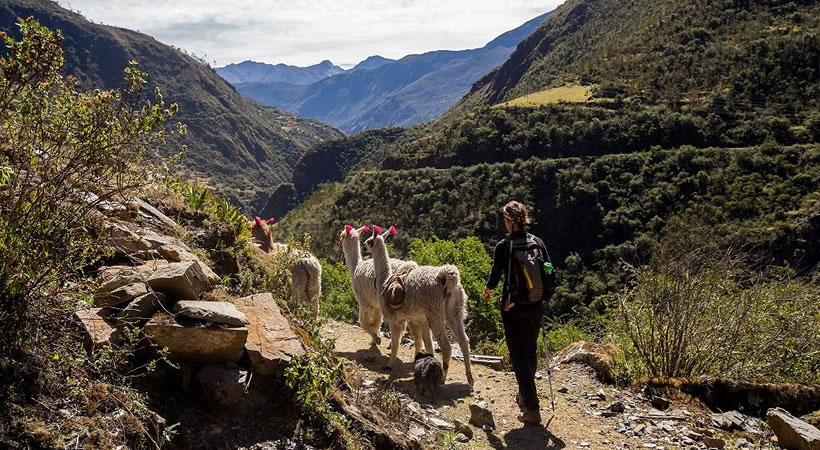 Puno: Lake Titicaca / Cusco: Machupicchu, Mountain of 7 colors (7d/6n) / Private and shared service