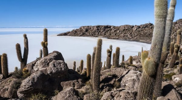 Uyuni – Colchani – Fish island – Uyuni (Full day) / Shared service
